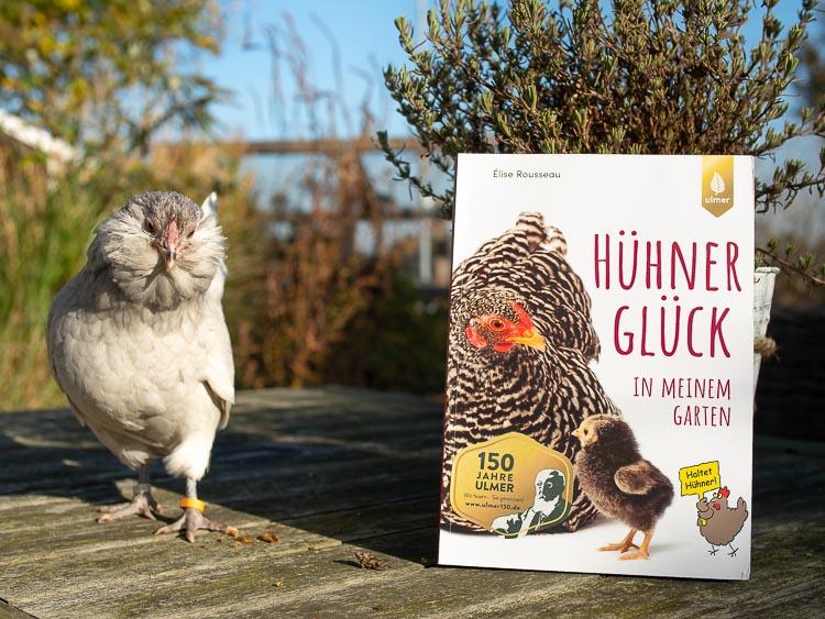Hühnerglück in meinem Garten