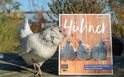 Hühner – alles zur artgerechten Haltung, Pflege und Nachzucht