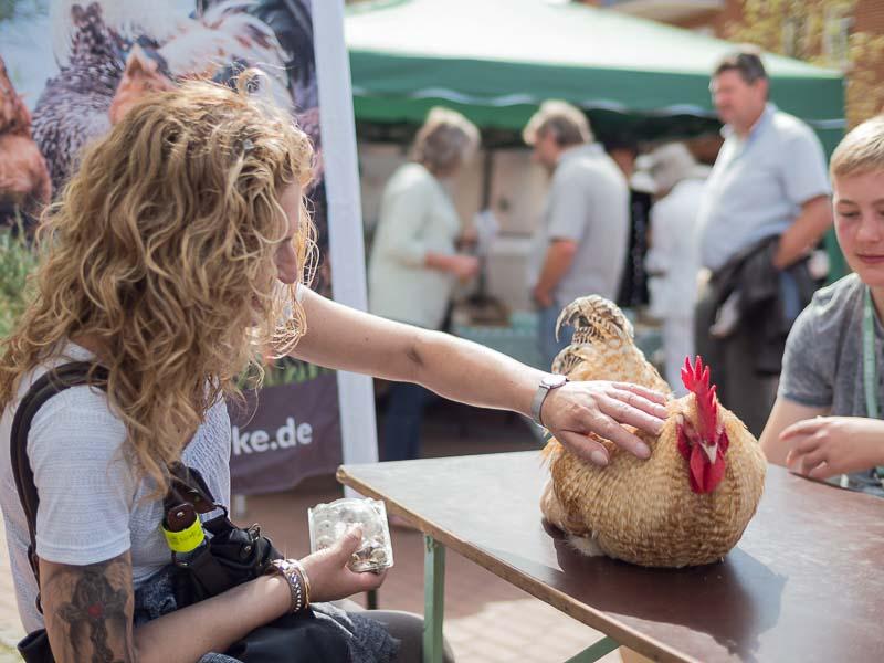 Der Geflügelzuchtverein auf dem Weyher Bio-BBQ